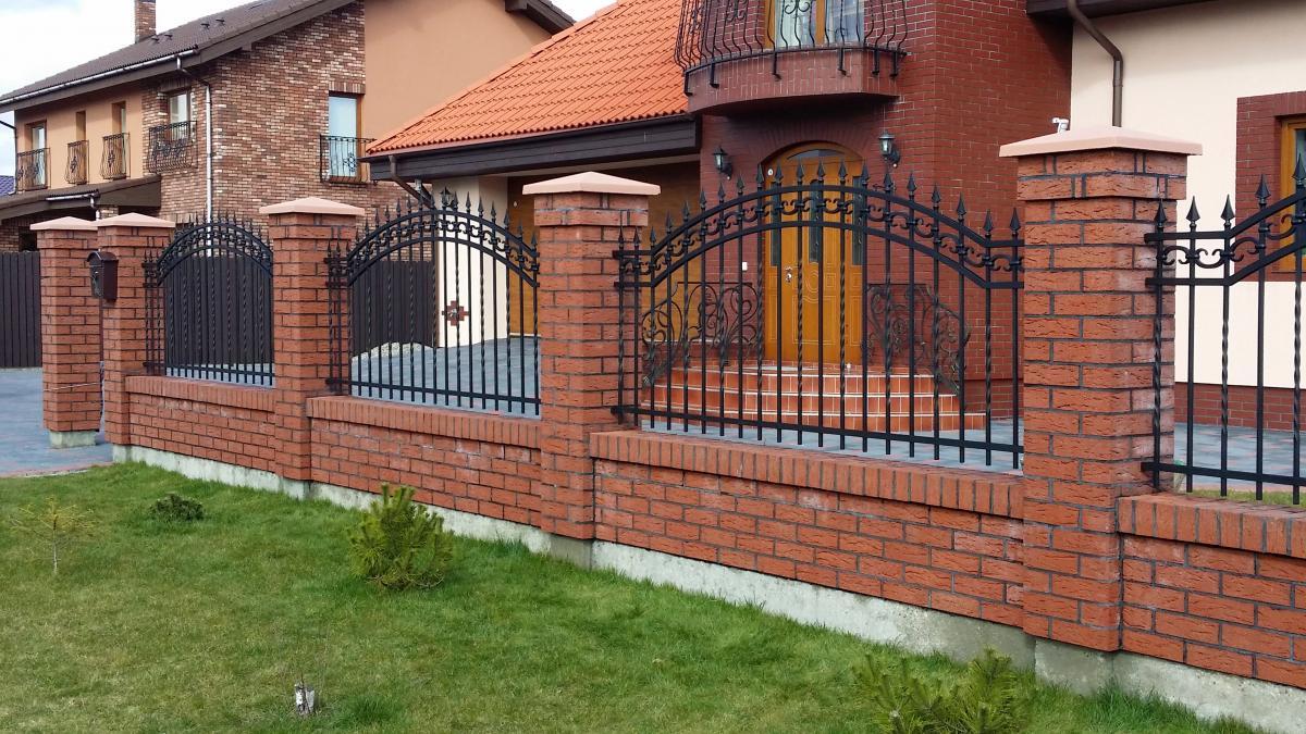 ežys varpos prie tvoros